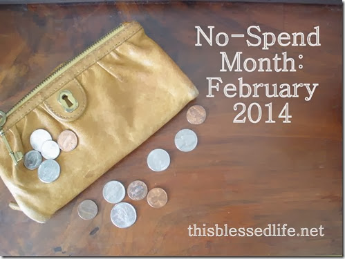No-Spend Month {February 2014} 012