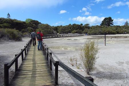 Imagini Insula de Nord: Rotorua, pe langa lac
