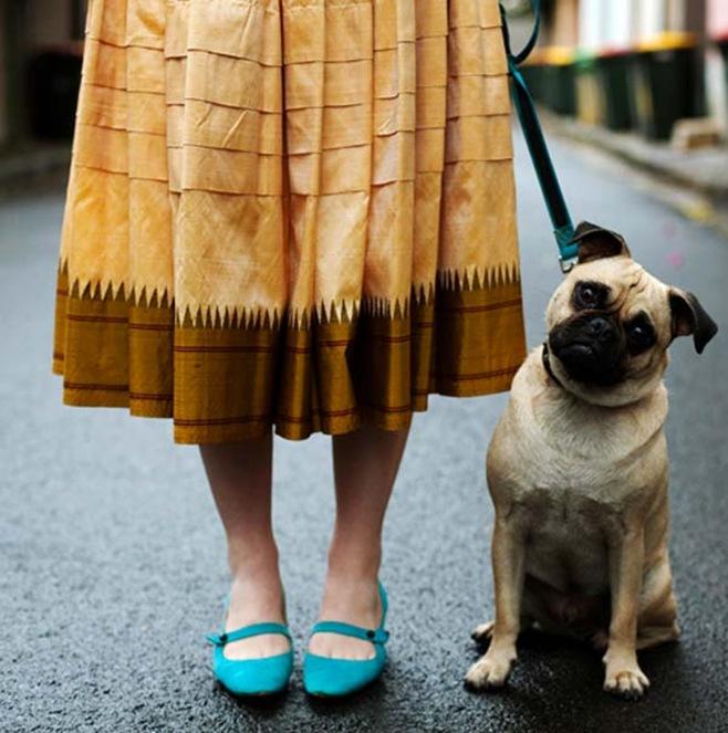 thesartorialist_dog
