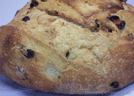 golden-raisin-bread 054