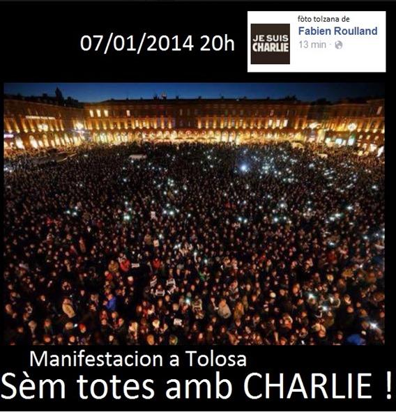 manifestacion de Tolosa 2