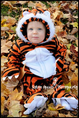 tiger3