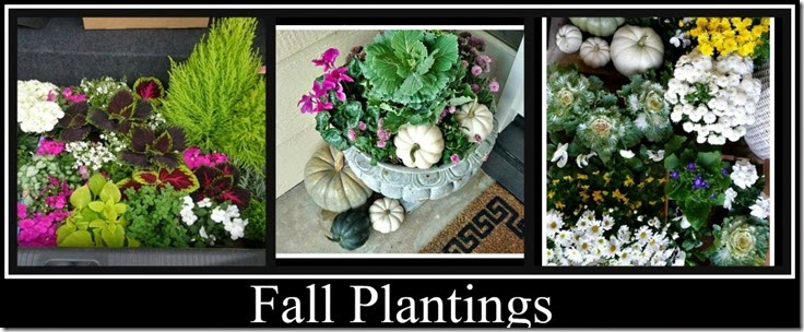 Ribbet collage Fall plantings