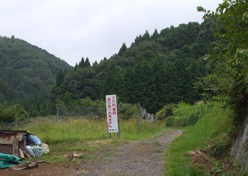 20120911_045406.jpg