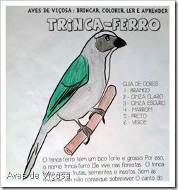 Desenho de Murilo Cunha, 9 anos, de Juiz de fora - MG.