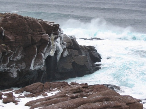 Newfoundland '05 021