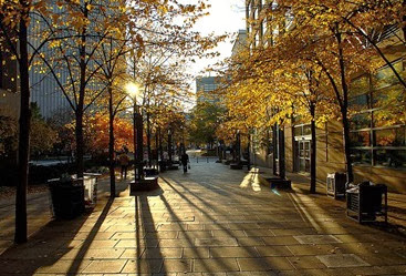 800px-Rays_of_autumn_light_in_Toronto