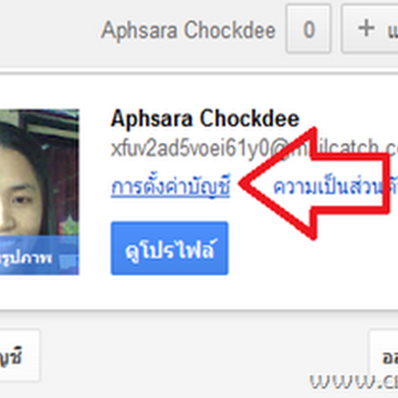 Back up และ Download รูปภาพจาก Picasa web Albums
