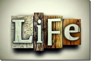 wpid-life_711