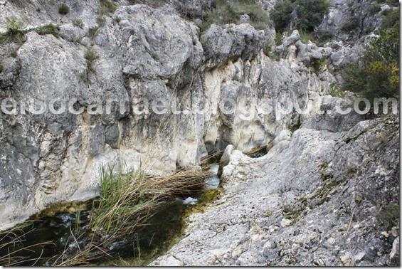 MoliSALT 18-3-13 elSocarraet ©rfaPV (4)
