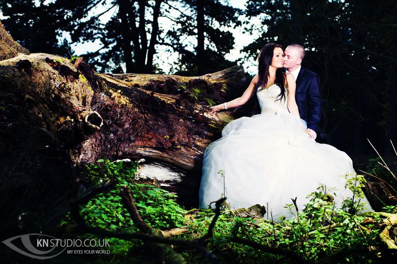Tatton_Park_wedding_001.jpg
