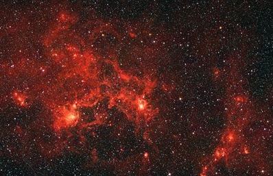 nebulosa Dragonfish