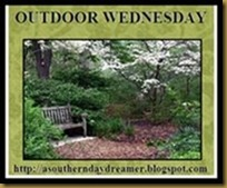 Outdoor_Wednesday_logo_thumb[2][1] copy