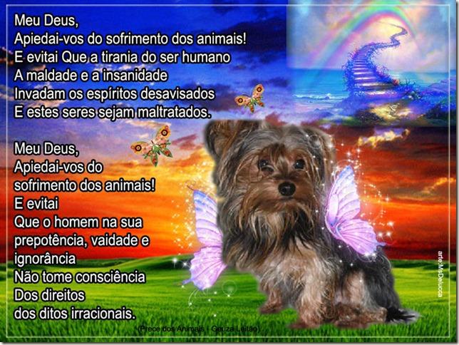 prece_dos_animais