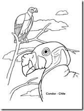 condor 2 1