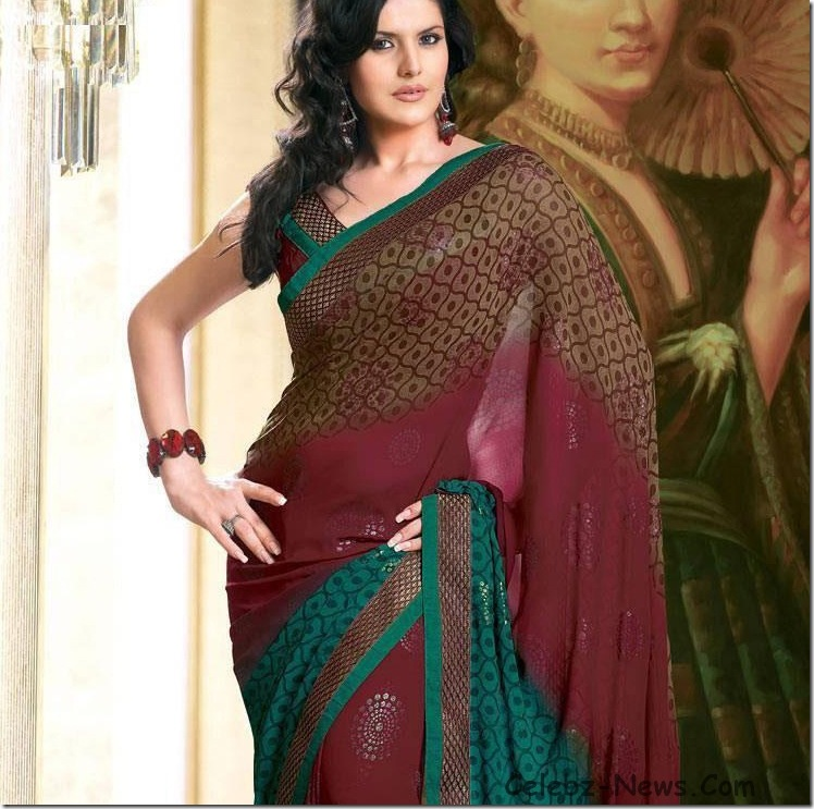 zarine-khan-saree-7
