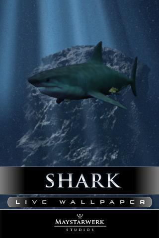 鯊魚攻擊現場壁