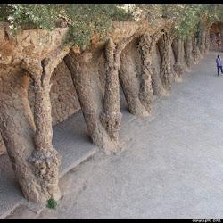 62.- Gaudí. Parque Güell