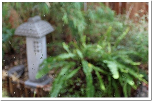 120122_rain1