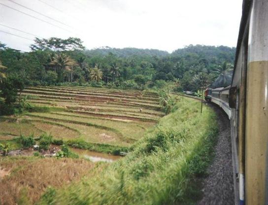 indonesia 16