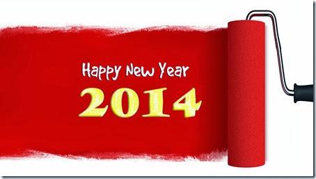 2014 año nuevo (7)