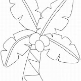 tropical-flower-coloring-pages-1_LRG.jpg