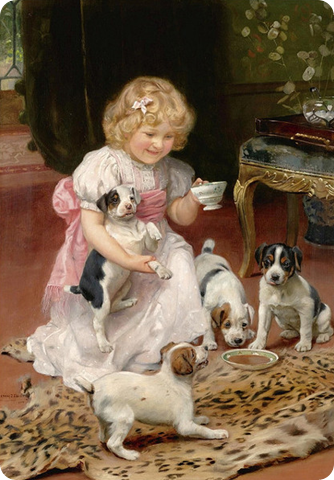 puppy teaparty