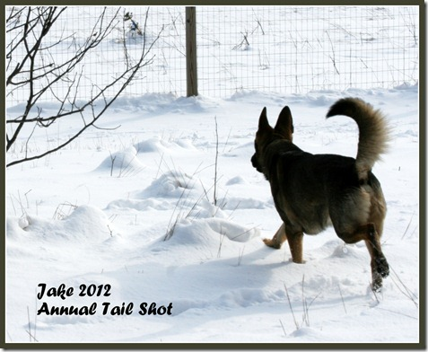 Jake 2012 Annual Tail Shot