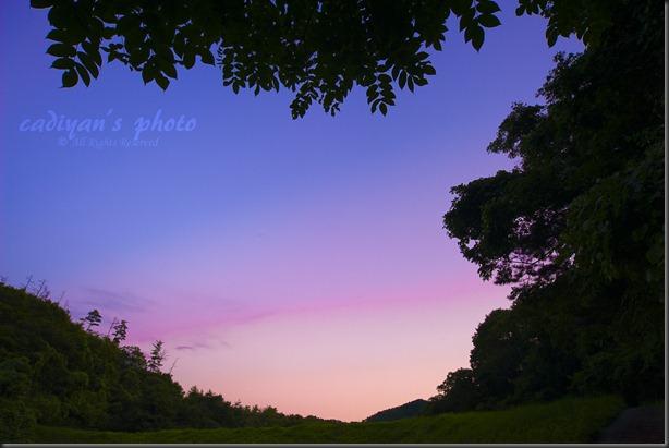 D700_2012-08-16_025