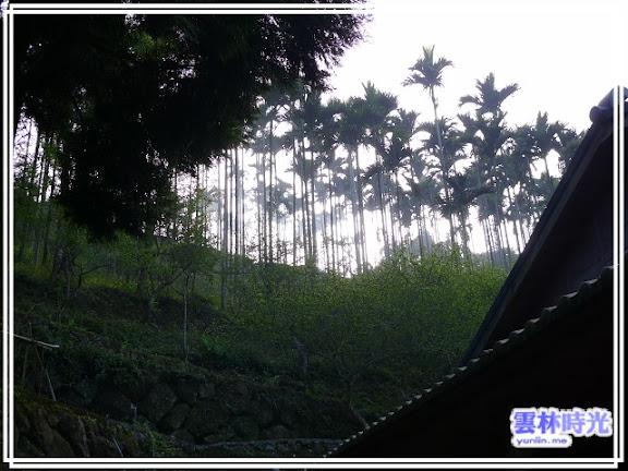 a021.jpg