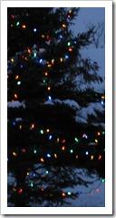 20111227_lights_005