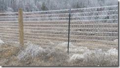 icy fenceline