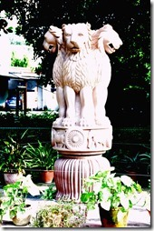 sarnath 044 symbole national sommet de la colonne d'Ashoka