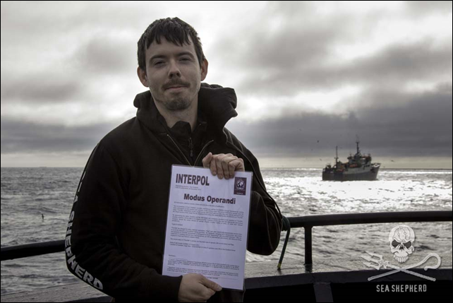 BUSTED! Capt. Peter Hammarstedt catches toothfish-poaching vessel, Thunder, inside the Commission for the Conservation of Antarctic Marine Living Resources (CCAMLR) region of management. Photo: Simon Ager / Sea Shepherd