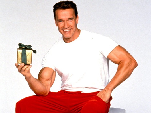 kinopoisk.ru-Arnold-Schwarzenegger-575801--w--1024