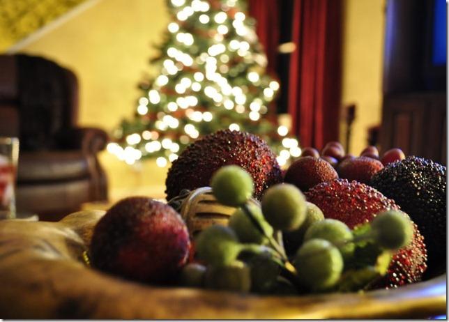 christmas lights dec 18 157