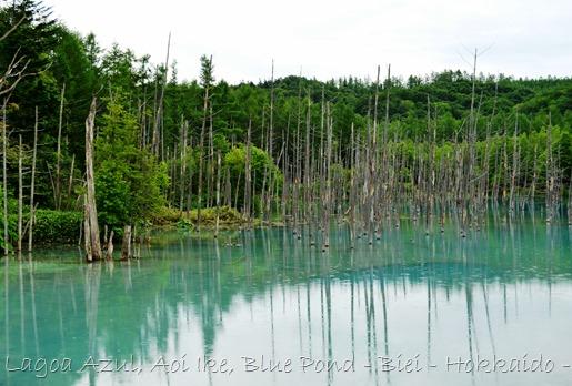 Lagoa Azul - Biei - Hokkaido - Glória Ishizaka - 11