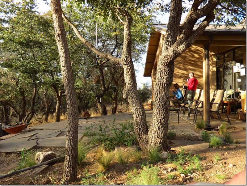 Ash Canyon garden