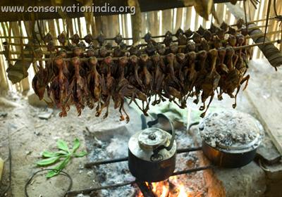 Cocinando las aves