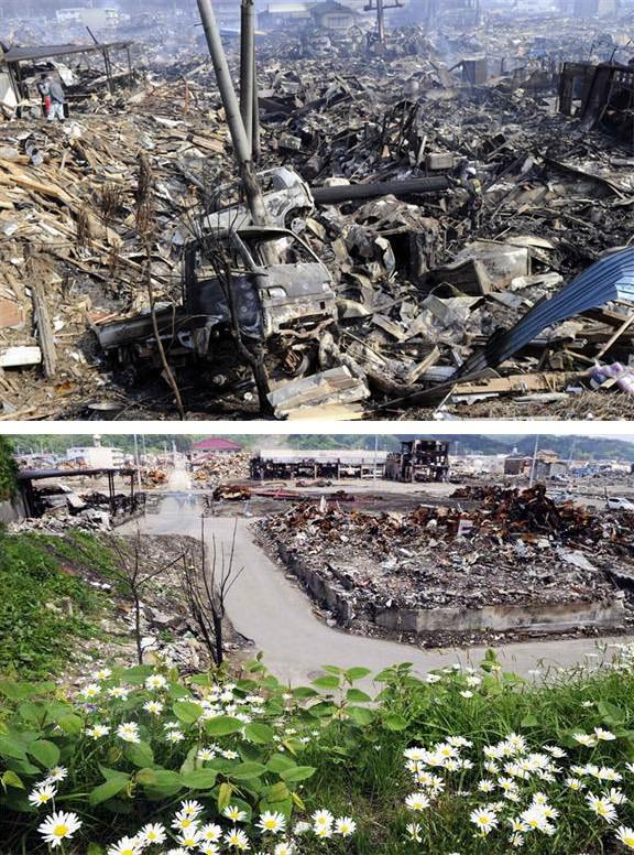 japan-tsunami-cleanup12-1