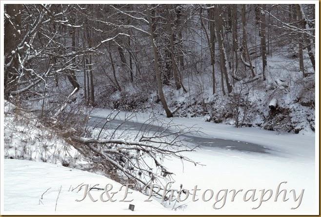 winter scenery (1 of 1)