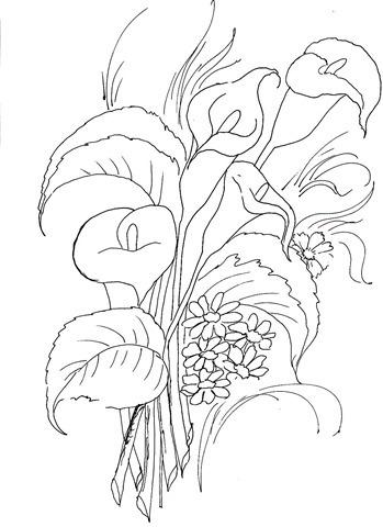 desenho de flor-risco-copo-de-leite