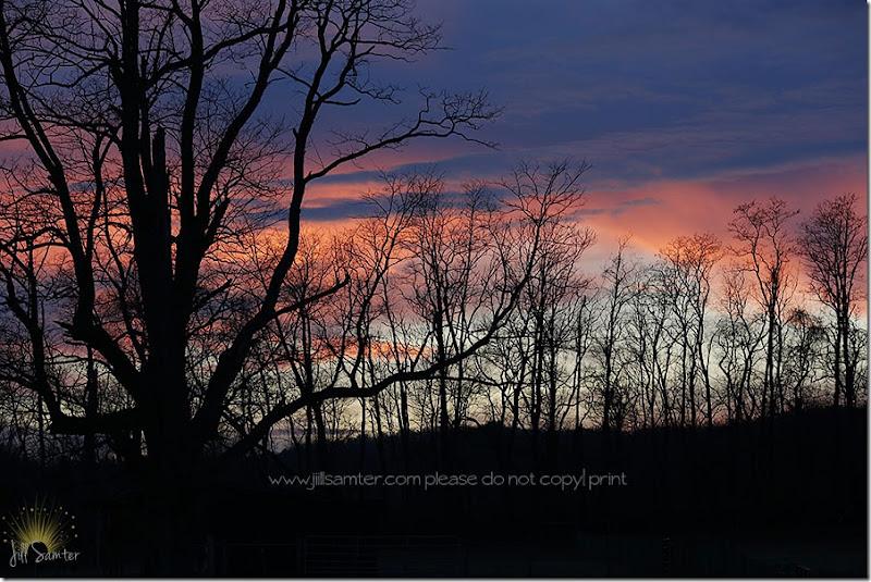 sunset_3316