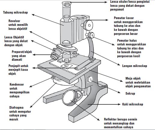 Bagian - bagian mikroskop