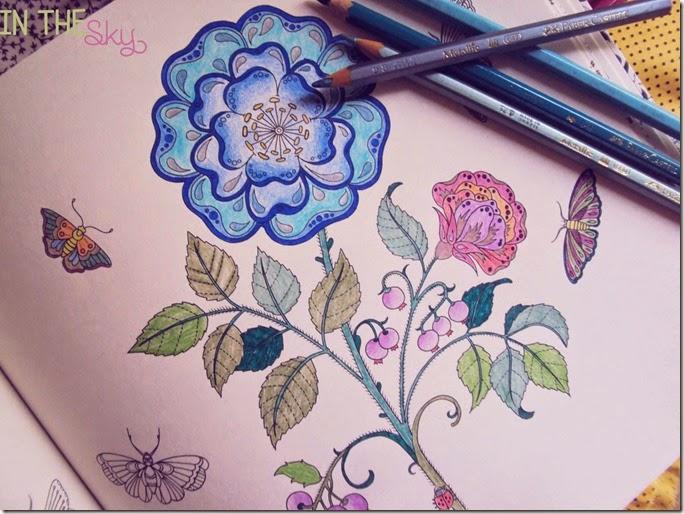 jardim secreto05