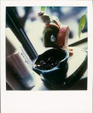 jamie livingston photo of the day September 01, 1997  ©hugh crawford