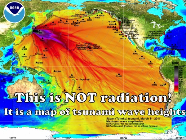 'This is NOT radiation! It is a map of tsunami wave heights.' This image was created by NOAA's Center for Tsunami Research and graphically shows maximum wave heights (in centimeters or cm) of the tsunami generated by the Japan earthquake on 11 March 2011. Graphic: NOAA