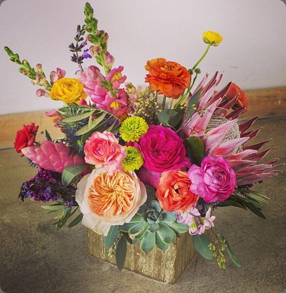 546068_514851531904656_1858314849_n primary petals