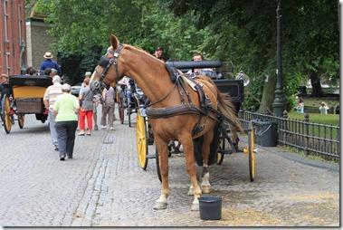馬の休憩所