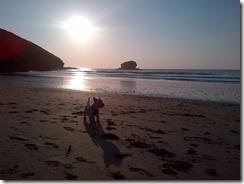 Cornwall-20130605-00579
